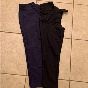 2 loft dress pants